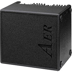 AER AER Domino 2 100W 2x8 Acoustic Guitar Combo Amp (DOMINO USED)