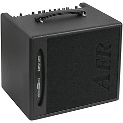 AER Amp-One 200W Bass 1x10 Combo Amp (AMP-ONE)