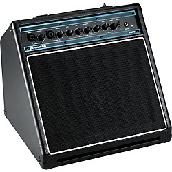 Acoustic AG30 30W 1x8 Acoustic Guitar Combo Amp (AG30)