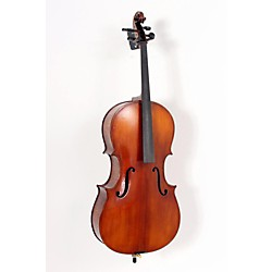 Bellafina 50L cello outfit (USED005022 BF50LCE12OF)