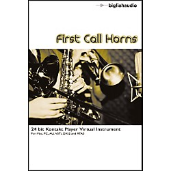 Big Fish First Call Horns Sample Library (FCHR1P)