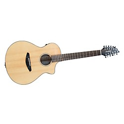 Breedlove Passport-12 String Acoustic-Electric Guitar (PASCONC12)
