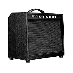 Evil Robot C30 18W/30W 1x12 Tube Guitar Combo Amp (USED004000 1428)