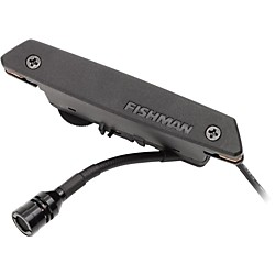 Fishman Rare Earth Blend Soundhole Pickup (PRO-REP-103)