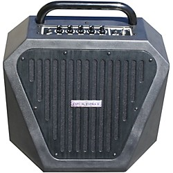 Four Force EM-1 Guitar Amplifier (USED004000 EM-1 BB)