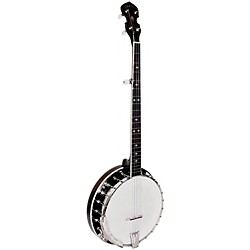 Gold Tone BG-250F Resonator Banjo (BG-250F)