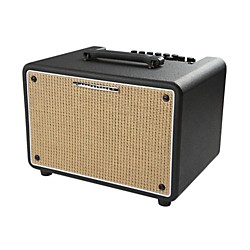 Ibanez Troubadour T150S 150W Stereo Acoustic Combo Amp (USED004000 T150S)