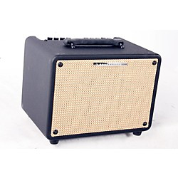 Ibanez Troubadour T30 30W Acoustic Combo Amp (USED005003 T30)