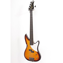 MTD Kingston CRB 5-String Fretless Electric Bass Guitar (USED005001 MTKCRB5EB-TS)