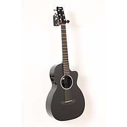 Rainsong P12 6-string Parlor with 12-fret NS neck (USED005004 P12)