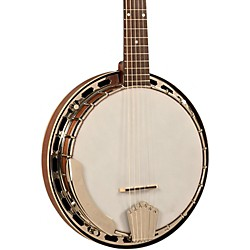 Recording King 6-String Banjo (RK-G25-BR)