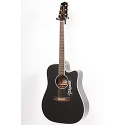 Takamine EG341SC Dreadnought Acoustic-Electric Guitar (USED005023 EG341SC)