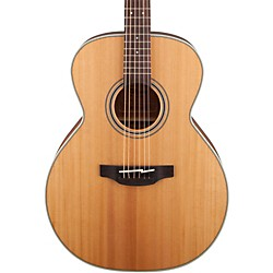 Takamine G Series GN20 NEX Acoustic Guitar (GN20-NS)
