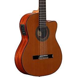 alvarez Artist Series AC65CE Classical Acoustic-Electric Guitar (AC65CE)