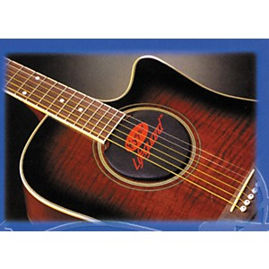Kyser-Lifeguard-6-or-12-String-Acoustic-Guitar-Humidifier-Standard
