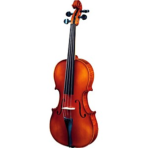 Strunal-260-Series-Violin-Outfit-4-4-Outfit