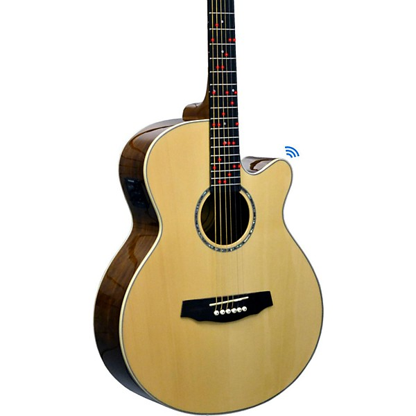 fretlight fg 629 wireless acoustic electric guitar music arts. Black Bedroom Furniture Sets. Home Design Ideas